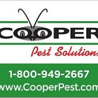 CooperPestSolutions's avatar