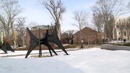 CalderOnCampus Princeton University