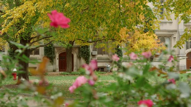 Beautiful Fall Color Transforms the Princeton Campus