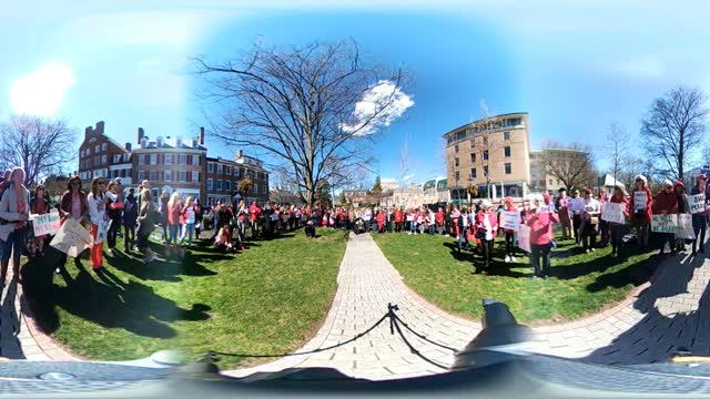 International Women's Day in Princeton - Princeton Marching Forward celebrates
