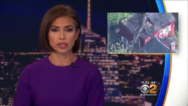 Tree Crashes Into Princeton Home Killing Dog Inside