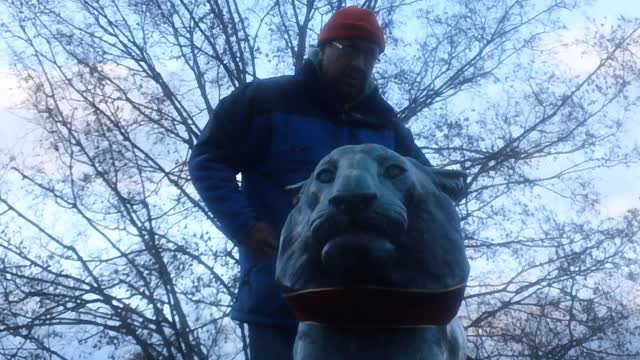 THE PALMER SQUARE TIGER GETS HIS BOW ON! Meet the man who dresses the Tiger for the Holidays every year.