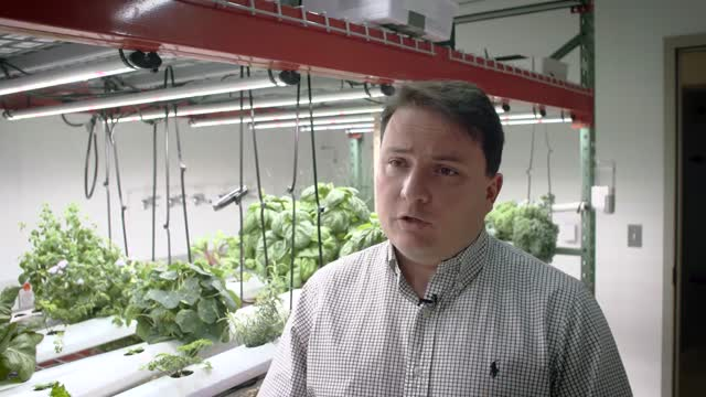 Room to grow: Princeton's Vertical Farming Project