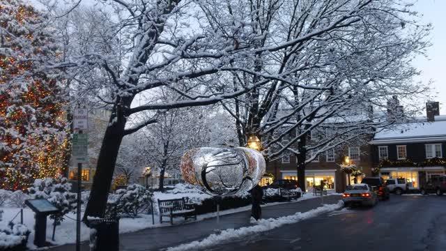 Princeton's Palmer Square Tree Lighting. It's Christmas in Princeton!