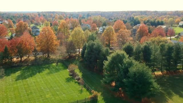 November 2017 - Princeton NJ Foliage