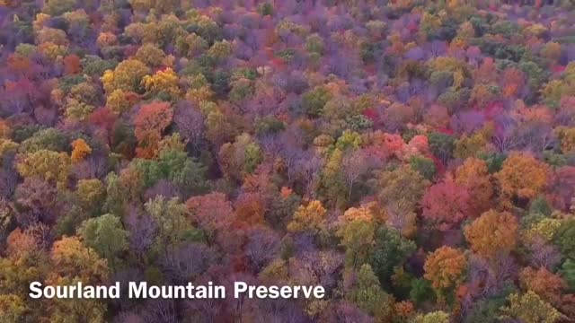 NJ Drone - Sourland Mountain Preserve