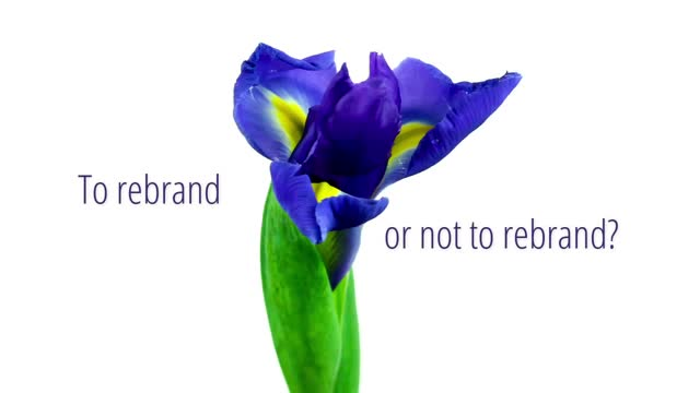 To rebrand or not to rebrand? How to know!