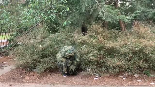 Bushman SCARE PRANK 2 | Princeton Tonight