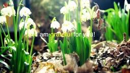 I am grateful for - spring!