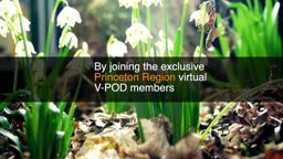 Exclusive Princeton Region V-POD - You can Join Now!