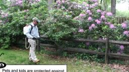 Cooper Pest Solutions Tick Prevention Program