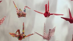 Princeton Paper Crane Project