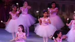 Princeton Ballet School and ARB's DANCE POWER on NJ Arts New