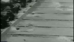 1964 Lesley Bush, Olympic Gold Medalist, Princeton. Amazing.
