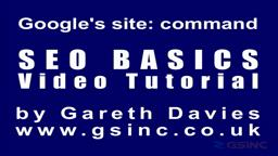 Search Engine Optimization Tutorial - Google Site Command