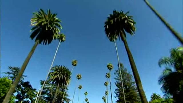 NY Sports Stephen A. Smith State of Mind 5/10/11