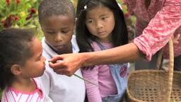 Princeton Day School - Our Garden, Our Carbon Footprint