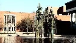 Daytage Princeton 11/6/11