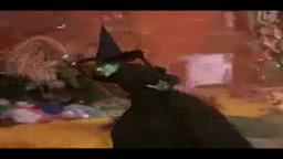 Wicked Witch Princeton