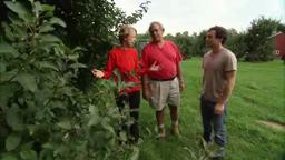 Terhune Orchards 'Farm to Fork New Jersey Apples'