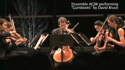 Princeton Ensemble ACJW January 19, 2012