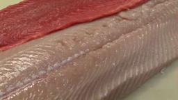 Blue Point Grill Summer Patio & Salmon Season Princeton