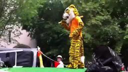 P-Rade Hold That Tiger Princeton University P-Rade