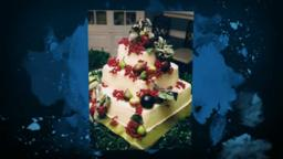 Designer Cakes, Chambers Walk, Cakes for all Occasions.