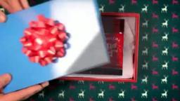ChristmasFloralShop 'A Floral Shop at Christmas'