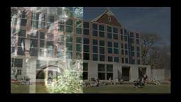 Princeton Shield Princeton University