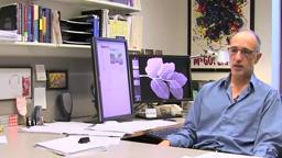 Affluence/Influence Princeton Professor Martin Gilens