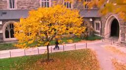 Experience Princeton